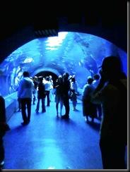 トンネル01