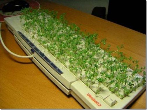 Cómo limpiar el teclado de nuestra PC