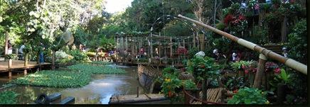 2008-12-30 Doi Tung