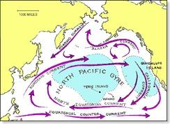 NorthPacificGyre