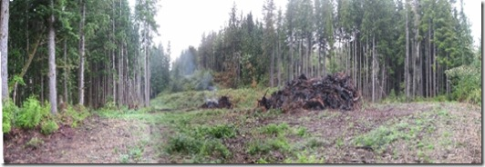 09-16-07 Panarama view looking back up lower pasture and burned down stump piles